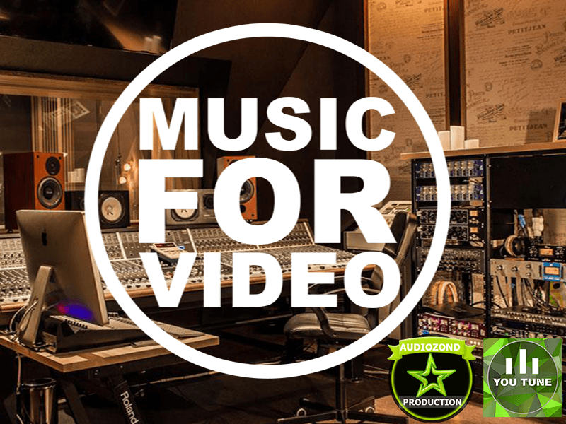 Audiozond Music For Videos Newsletter Form